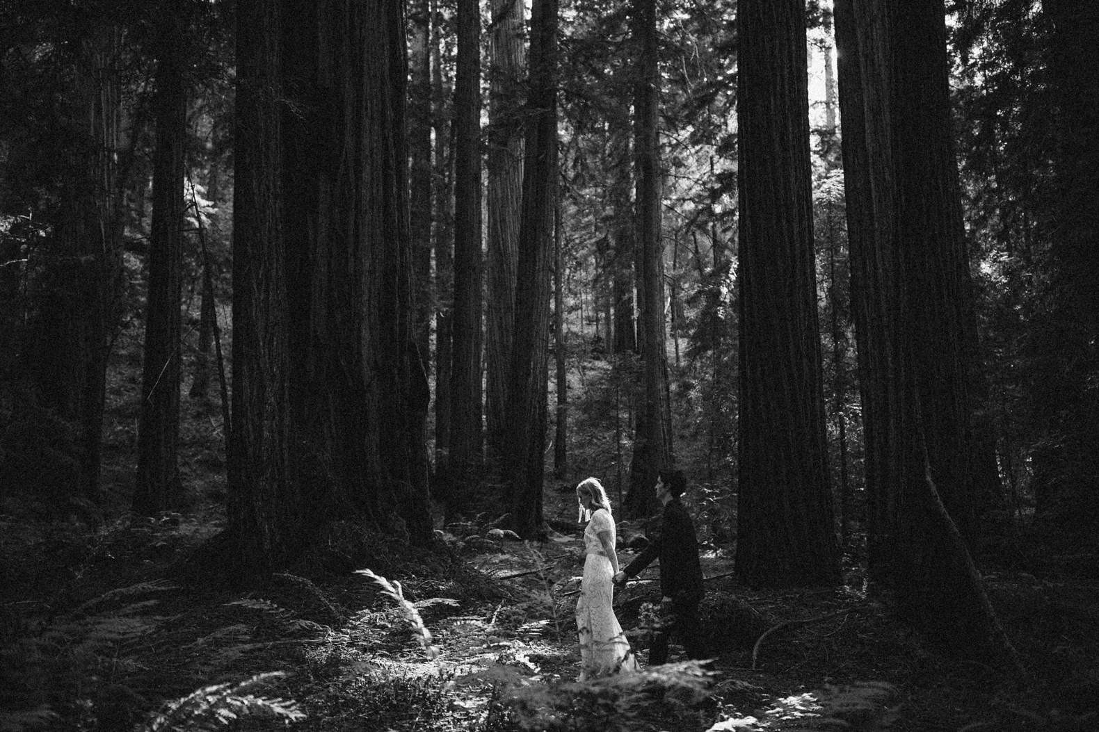 redwood-forest-elopement-0037