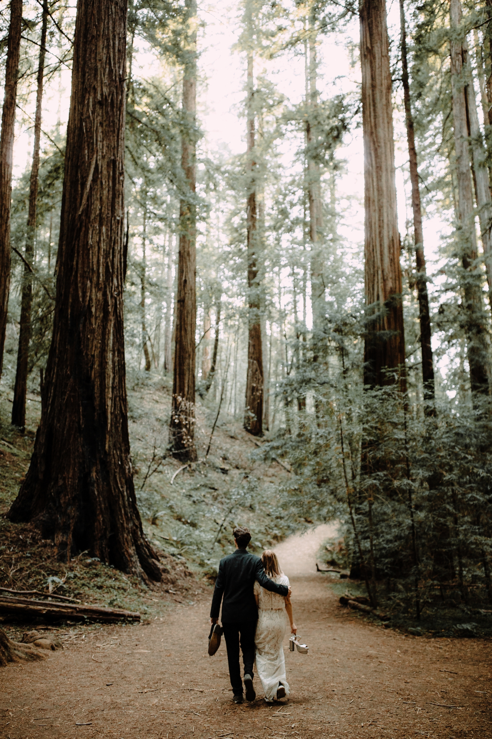 redwood-forest-elopement-0043